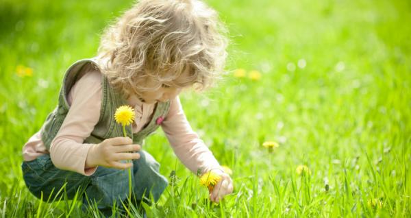 Spring Flowers Books & Activities for Preschoolers