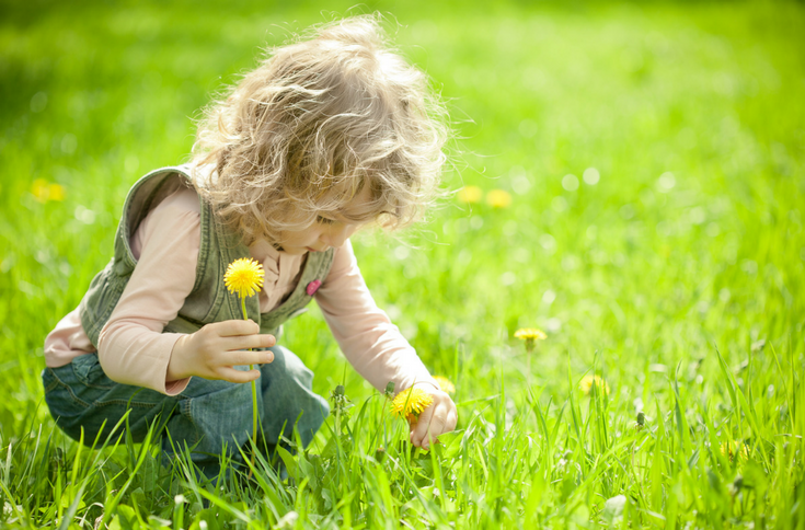 Spring Flowers Books & Activities for Preschoolers