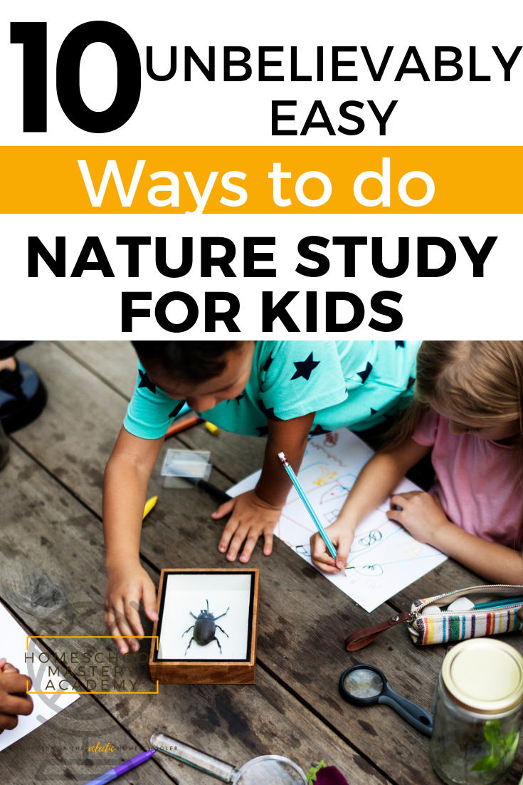 10 Unbelievably Easy Ways to do Nature Study for Kids