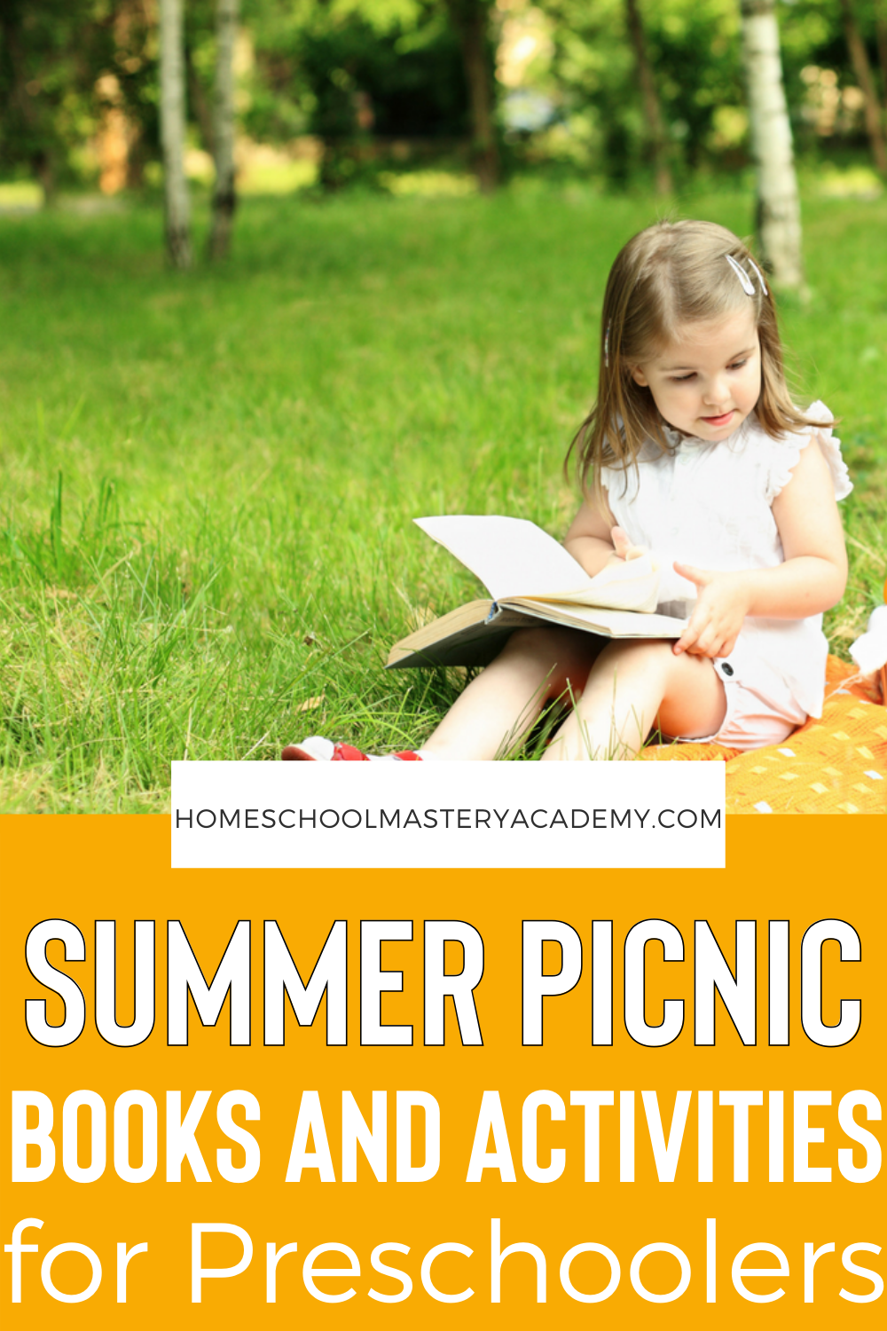 Enjoy all types of books and activities surrounding a picnic theme for preschoolers! Introduce early learning math and reading concepts as well as fine motor skills and learning through play! #preschool #preschollthemes #prek #homeschoolprintables #homeschoolpreschool