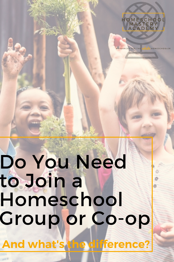 Do You Need to Join a Homeschool Group or Co-op