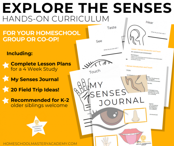 Hands-On Curriculum to Explore the Senses with your Homeschool Group or Co-op