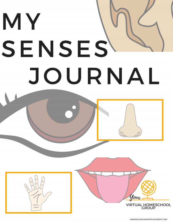 My Senses Journal