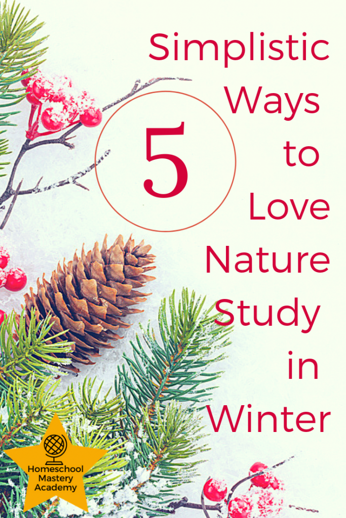 5 Simplistic Ways to Love Nature Study in Winter