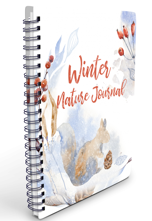 Winter Nature Journal