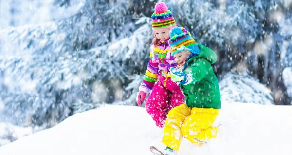 Exciting Ways to Study Winter Nature in the Snow