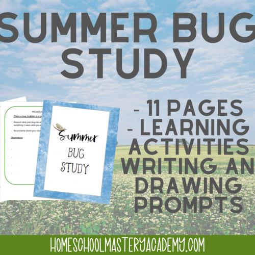 Bug Study
