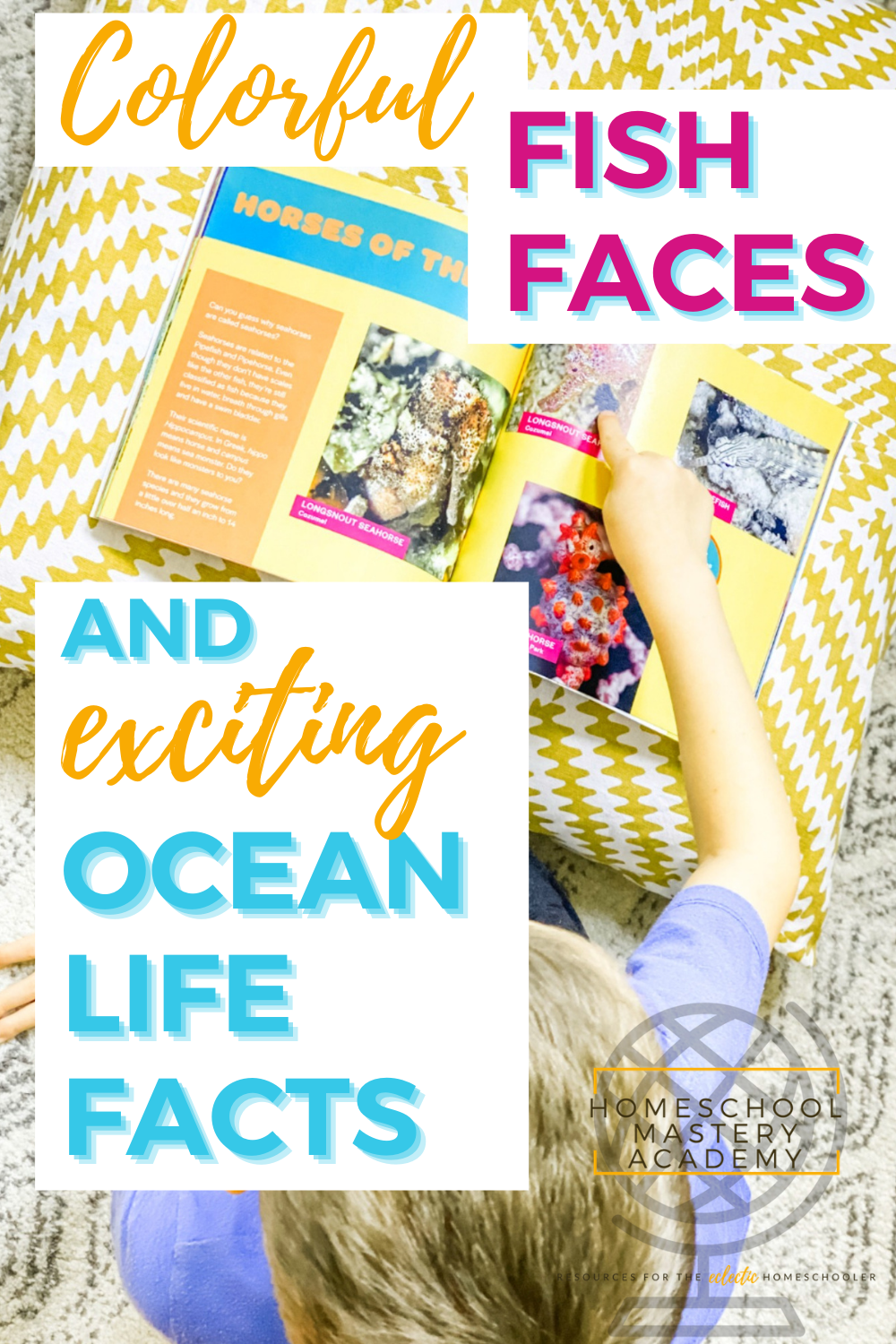 Fish Faces and Ocean Life Facts